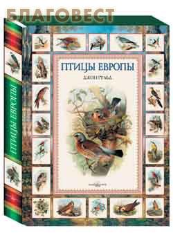 Птицы Европы. Суперобложка. Футляр