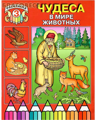 Раскраска 3. Чудеса в мире животных