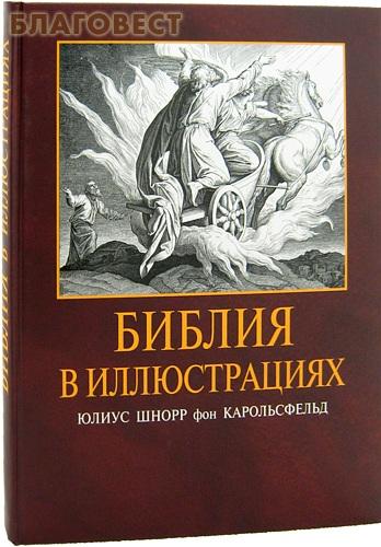 Библия в иллюстрациях. Юлиус Шнорр фон Карольсфельд ( Российское Библейское Общество -  )
