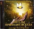 Диск (MP3) Ангелы приходят всегда. Повесть инока Всеволода (Филипьева) Аудио-книга. Читает Игорь Ильин